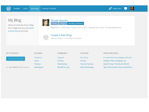 SEO and WordPress 33