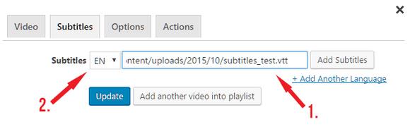 Adding subtitles