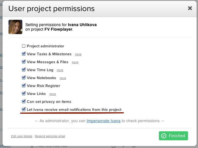 teamworkpm project permissions normal user