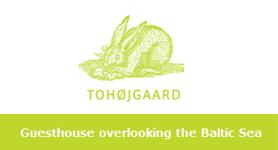 tohojgaard-tohoejgaard.com-1.png