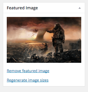 How to restore missing WordPress Featured Image Screen Option