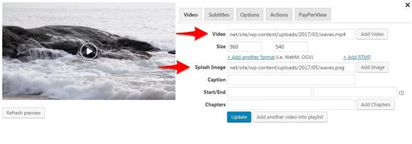 Add a source video URL and set a splash image