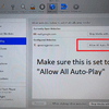 allow-all-auto-play