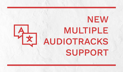 New multiple audio tracks support